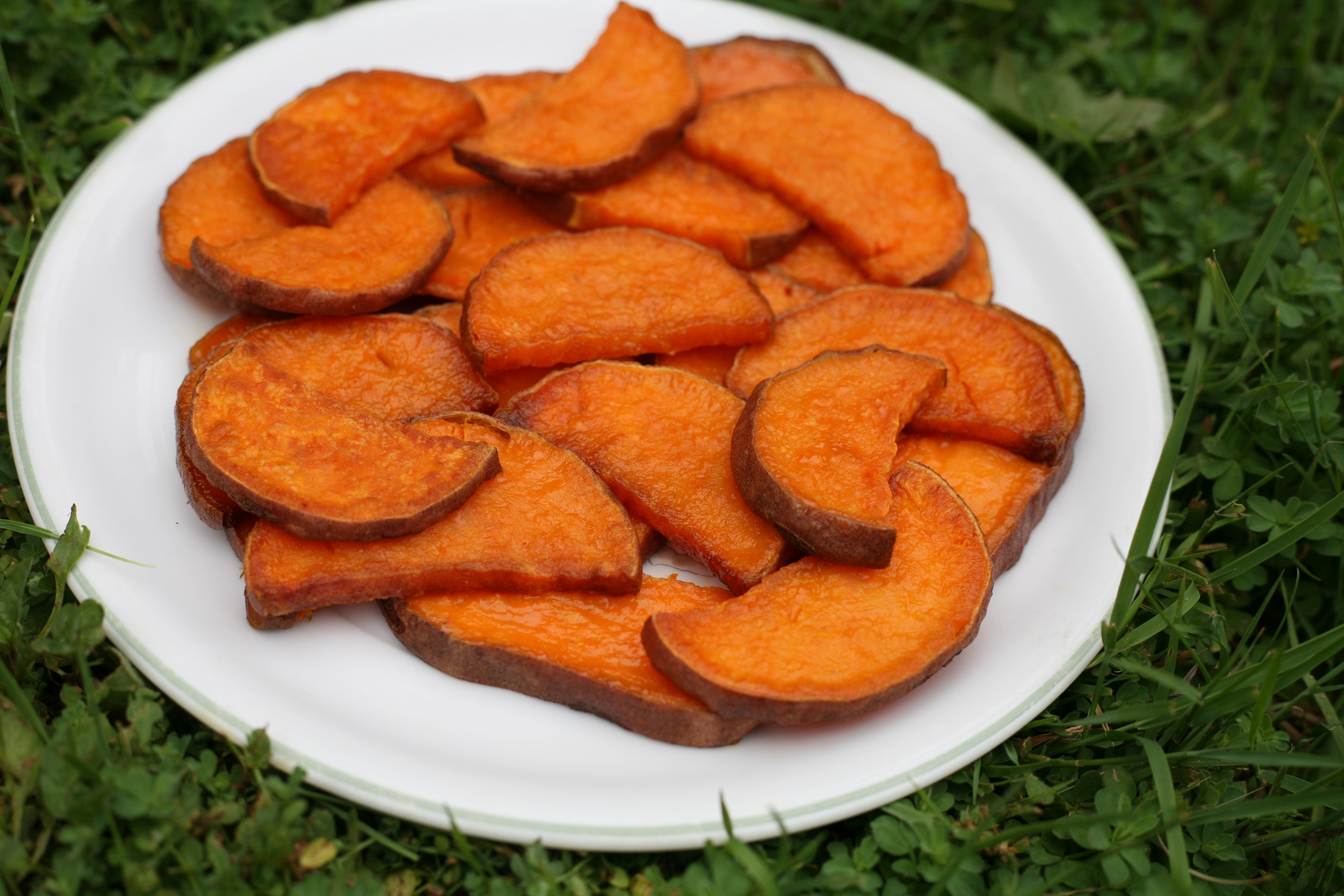 Baked Sweet Potato Slices Woolymossroots