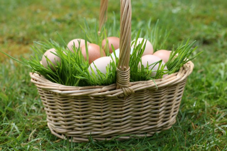 Living Spring Baskets