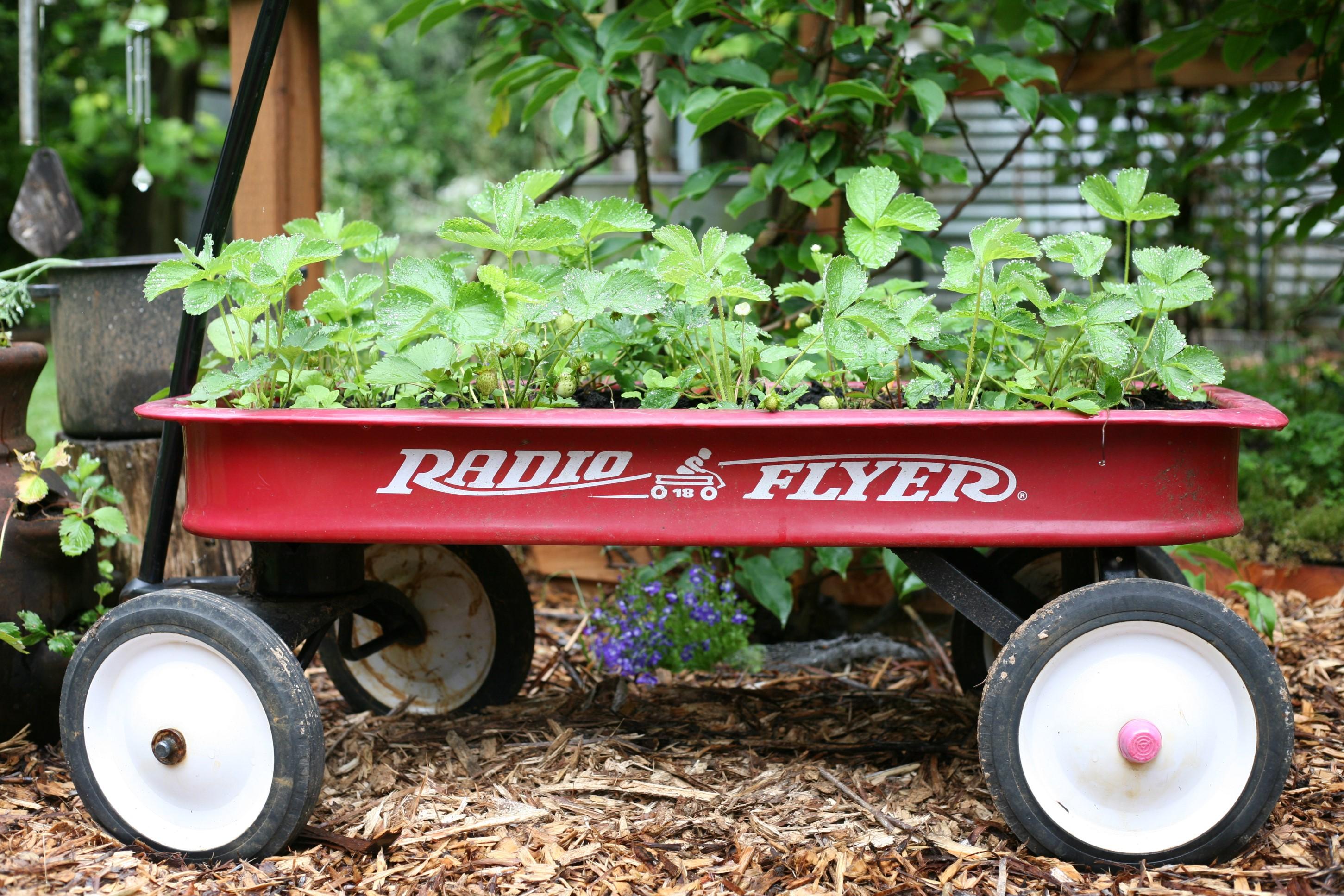 Re-purposing for Planting